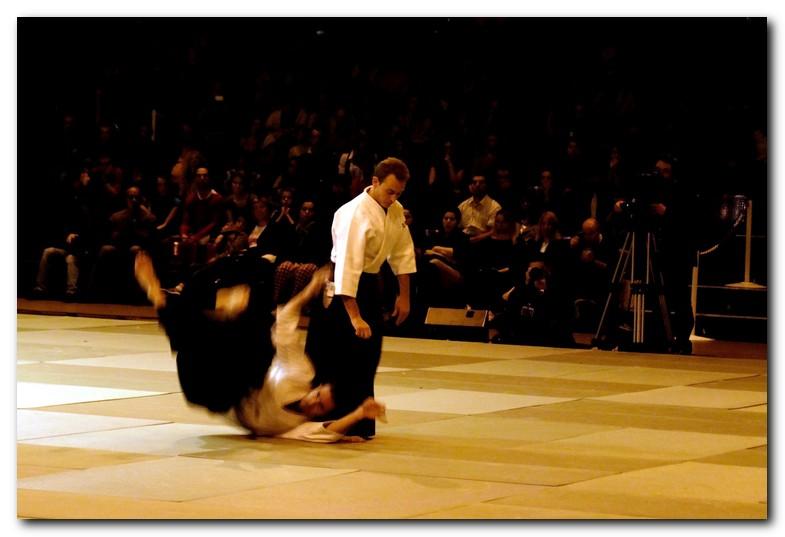 Retour sur la Nuit des arts martiaux traditionnels 2008 et la démo de Mickaël Martin namt08_010